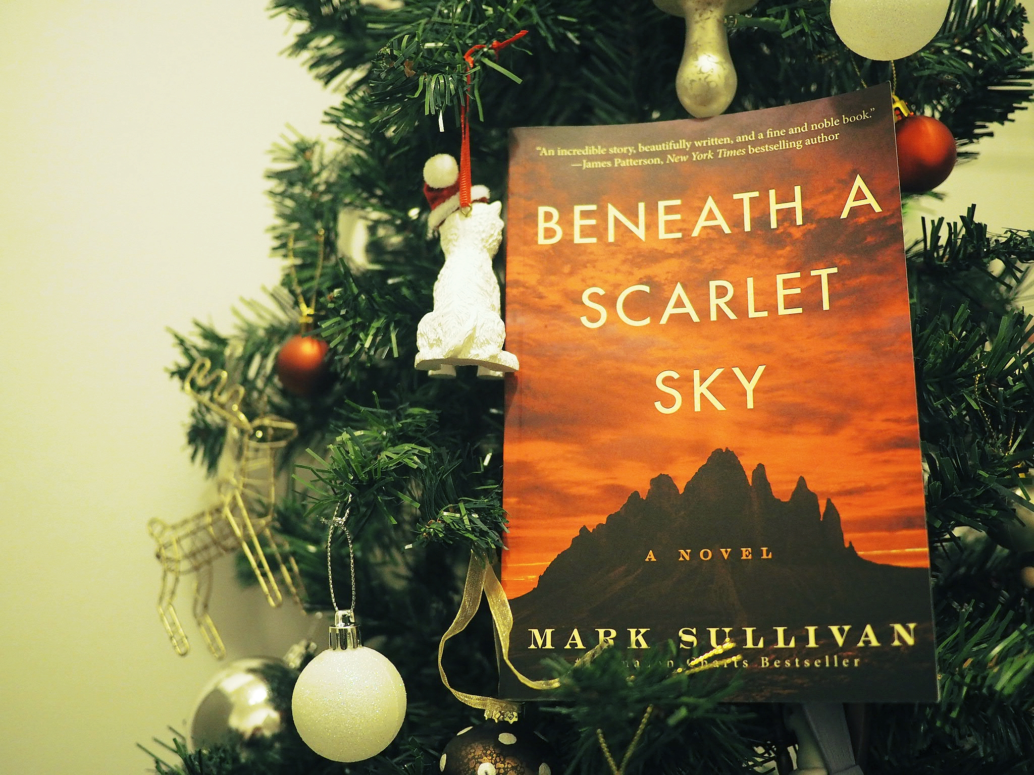 Bookmas Day 8: Book Advent Calendar #4 (and a wee giveaway!)